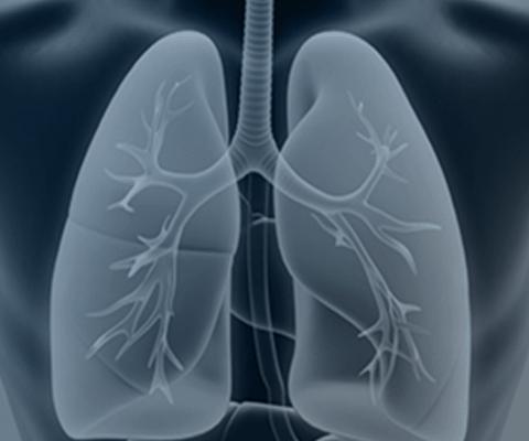 Avaliação e Treino Respiratório